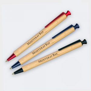 Sustainable timber Albero Pen with coloured trim