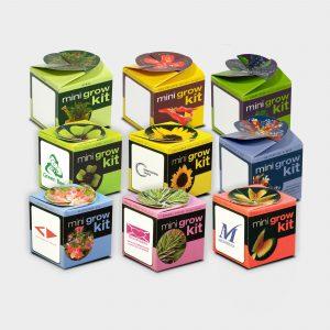 Notre Green & Good Tiny Terracotta cube contient un petit pot en terre cuite ø 55 mm